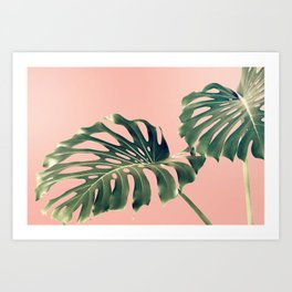 Monstera Blush Art Print