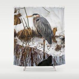 Heron pose along the bank Shower Curtain