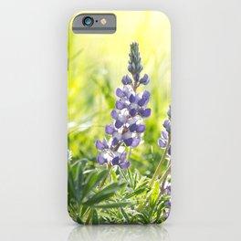 Lupine Light iPhone Case
