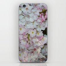 Underneath The Cherry Tree iPhone Skin