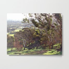 Swan Valley Perth Western Australia Metal Print