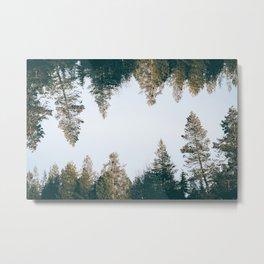 Forest Reflections IX Metal Print