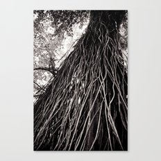 Roots of the Earth Canvas Print
