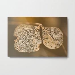 Lace hydrangea Metal Print