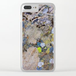 Nature's  patterns Clear iPhone Case