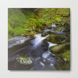 Magic garden - Wicklow Mountains  (RR89) Metal Print