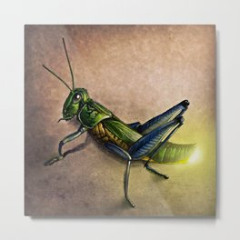The Firefly and the Grasshopper Metal Print