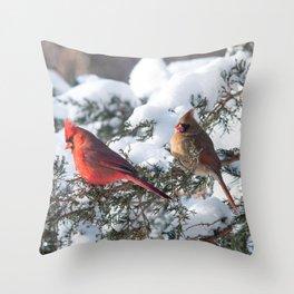 Sunny Winter Cardinals in the Adirondacks Throw Pillow