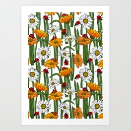 Ladybirds and Daisies Summer Meadow Pattern Art Print
