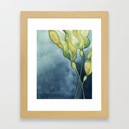 Bull Kelp Watercolor Framed Art Print