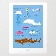 The Life Aquatic Fish Chart Art Print