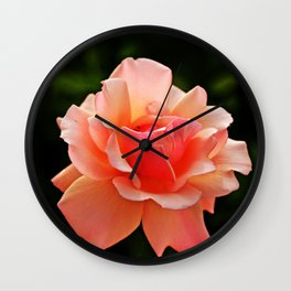 Pink Rose Blooming Wall Clock