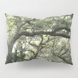 Georgia Live Oaks Pillow Sham