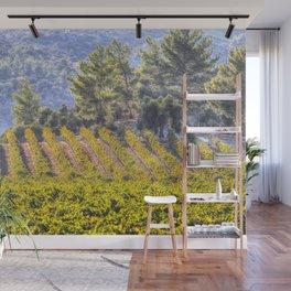 Summer Vineyard Wall Mural