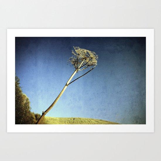 Giant Hogweed Art Print