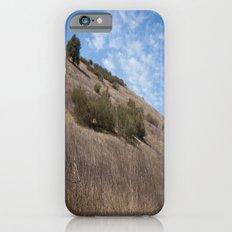 A Field Summer Slim Case iPhone 6s