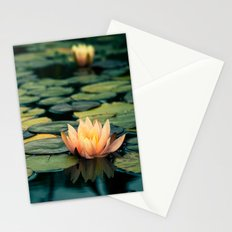 Celladora Stationery Cards