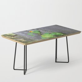 The Garden Wall Coffee Table