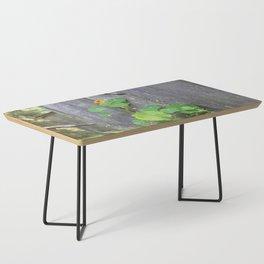 The Garden Wall Coffee Table