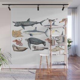 Marine wildlife Wall Mural