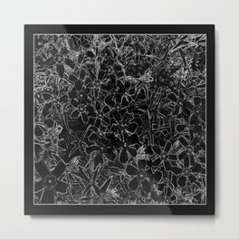 Flower | Flowers | Black and White Flox Graphic Metal Print