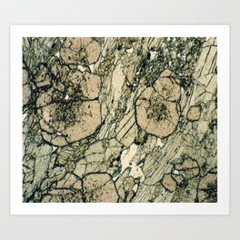 Garnet Crystals Art Print
