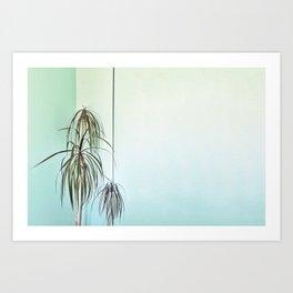 Palm Wall Art Print
