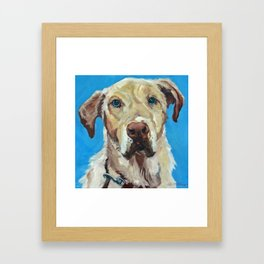 Golden Labrador retriever Framed Art Print