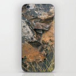 Lost Treasures iPhone Skin