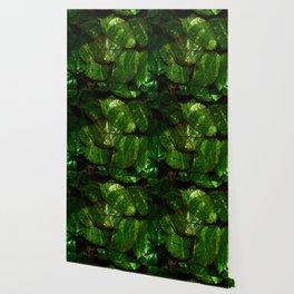 leaves V4WL Wallpaper