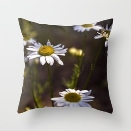 Of Power and Success Throw Pillow