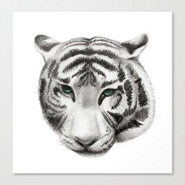 White tiger portrait Canvas Print
