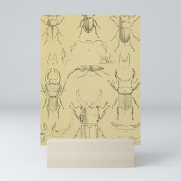 F.J. Sidney Parry - A catalogue of Lucanoid Coleoptera (1864) - Odontolabis beetles Mini Art Print