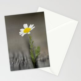 simply daisy Stationery Cards