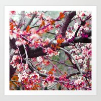 it maybe summer, it maybe spring, i can't remember_2 Art Print