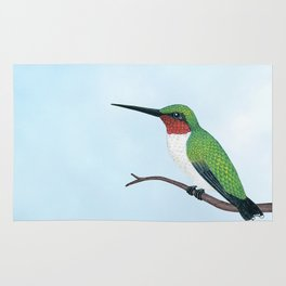 the studious male (ruby-throated hummingbird) Rug