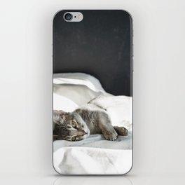 cat3 iPhone Skin