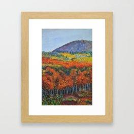 Mountain Wonder Framed Art Print
