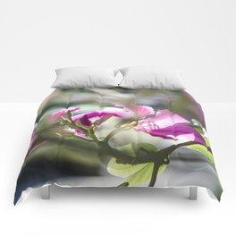 Translucid Turmoil Comforters