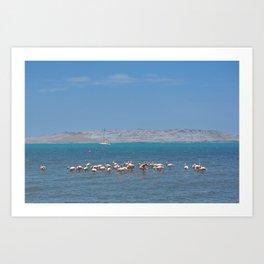 Paracas - National Reserve Art Print