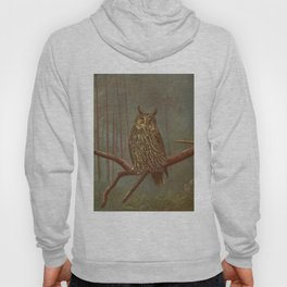 Vintage Illustration of an Owl (1902) Hoody