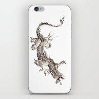 dragon iPhone & iPod Skins featuring Dragon by Ju.jo.weh