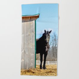 Percheron Horse by Teresa Thompson Beach Towel