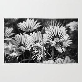 Desert Daisies (bnw) - Daisy Project in memory of Mackenzie Rug
