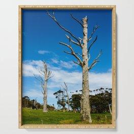 Lifeless Gum trees Serving Tray