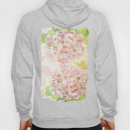 Pink Hydrangeas on a soft pastel abstract background Hoody