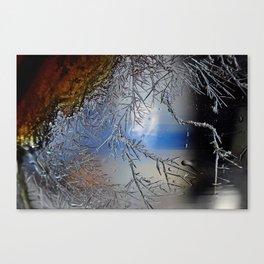 Crystal growth Canvas Print