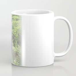 For Forever Summers Coffee Mug