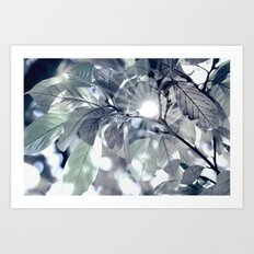 Leaves in my fantasy Art Print