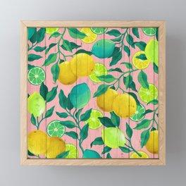 Citrus Framed Mini Art Print